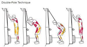 SkiErg Technique