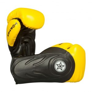 Top Ten Hero Boxing Gloves