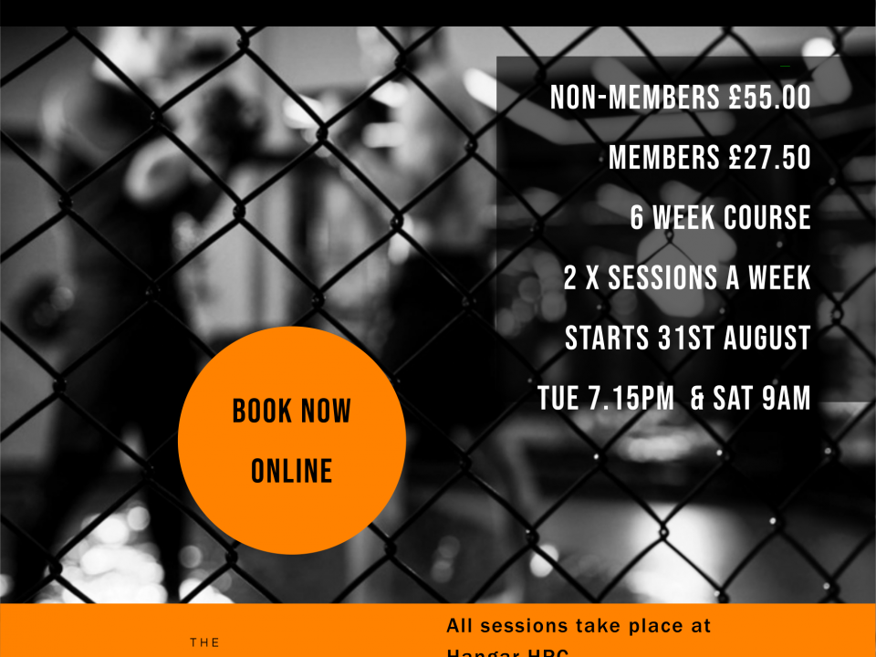 Beginners MMA Course: Aug 2021